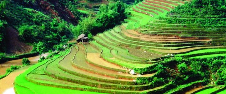 What You Need to Know about Vietnam Travel Packages