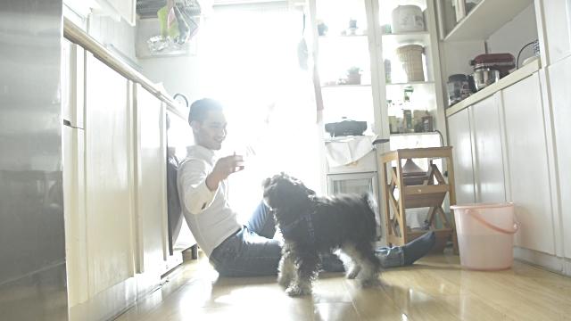 pet friendly food items