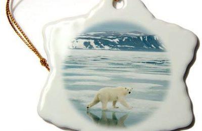 3dRose ORN_189138_1 Norway, Svalbard, Spitsbergen. Polar Bear Travels Along Sea Ice. Snowflake Ornament, Porcelain, 3-Inch