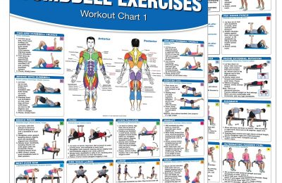 Dumbbell Workout Poster/Chart Set: Shoulder Training – Dumbbell Exercises Poster – Dumbbell Workout Chart – Dumbbell Workout Poster – Dumbbell Exercises … Training – Fitness Wall Charts – Strength