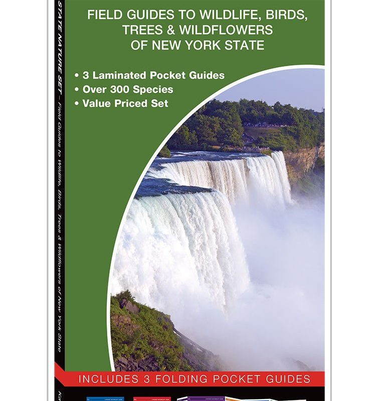 New York State Nature Set: Field Guides to Wildlife, Birds, Trees & Wildflowers of New York State
