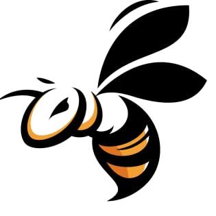 Savvy Bee