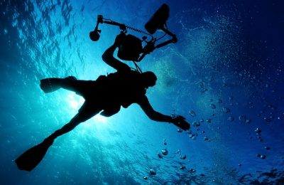 Top Koh Tao dive sites