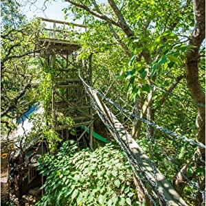 keep austin weird homes cool tree house treehouse