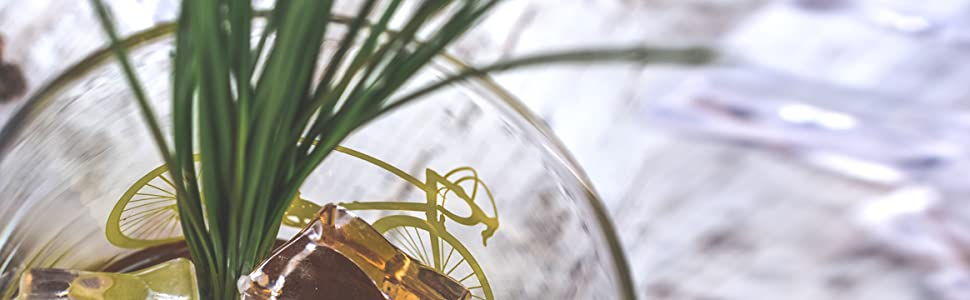 glass bicycle plant
