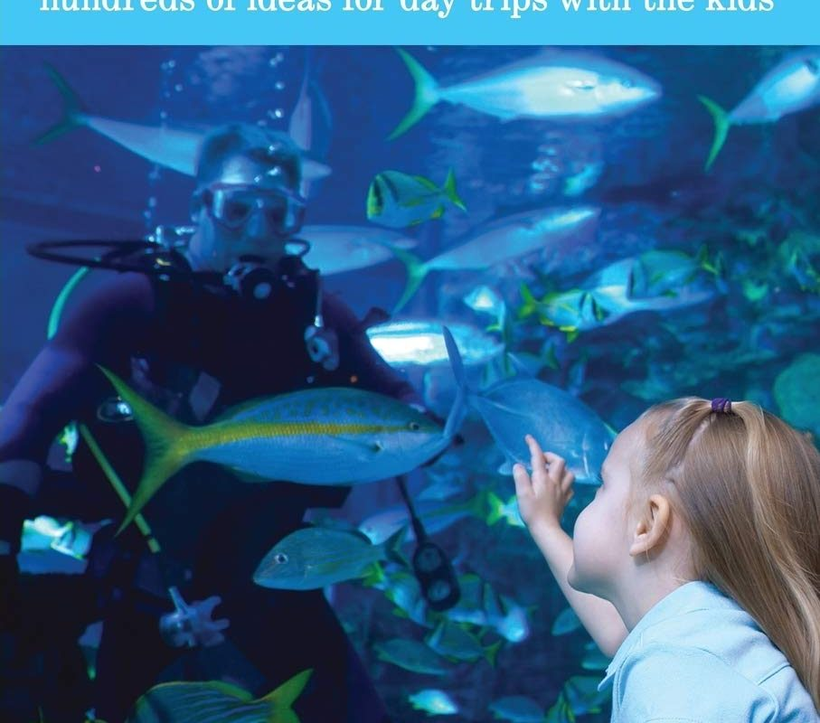 Fun with the Family Texas: Hundreds Of Ideas For Day Trips With The Kids (Fun with the Family Series)