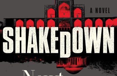 Shakedown: A Novel (Mayberry and Garrett, 2)